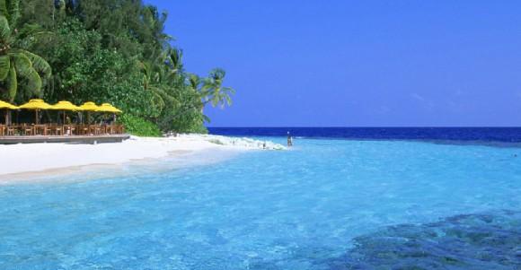 Отдых на море – совмещаем приятное с полезным