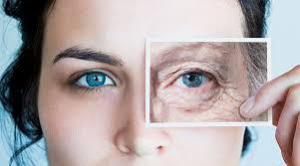 Врачи открыли дешевое эффективное средство против морщин и старения лица