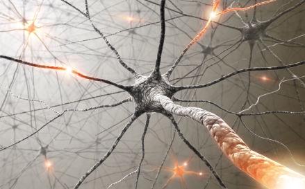 Редкое заболевание — рассеянный склероз (РС), которое поражает молодых людей