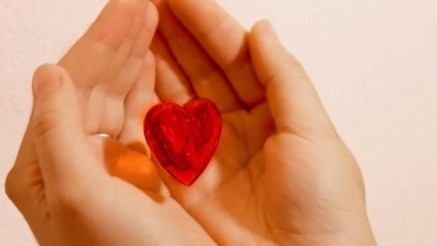 Ученые установили, как половые гормоны влияют на здоровье сердца