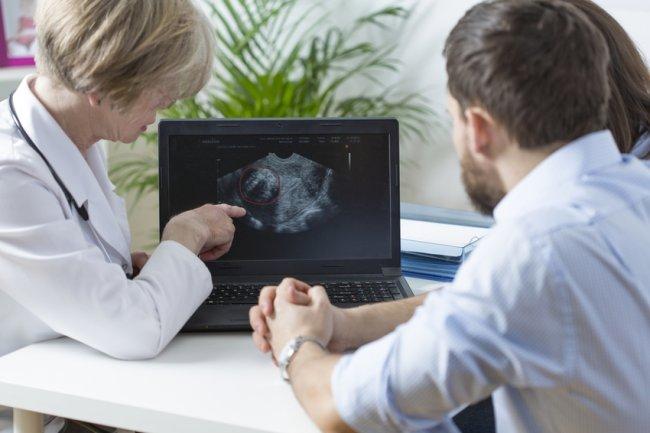Влияние костного мозга на фертильность определили специалисты