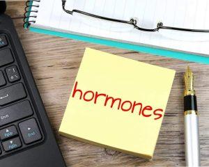 Перинатальные гормоны определяют риск заболеваний на протяжении всей жизни