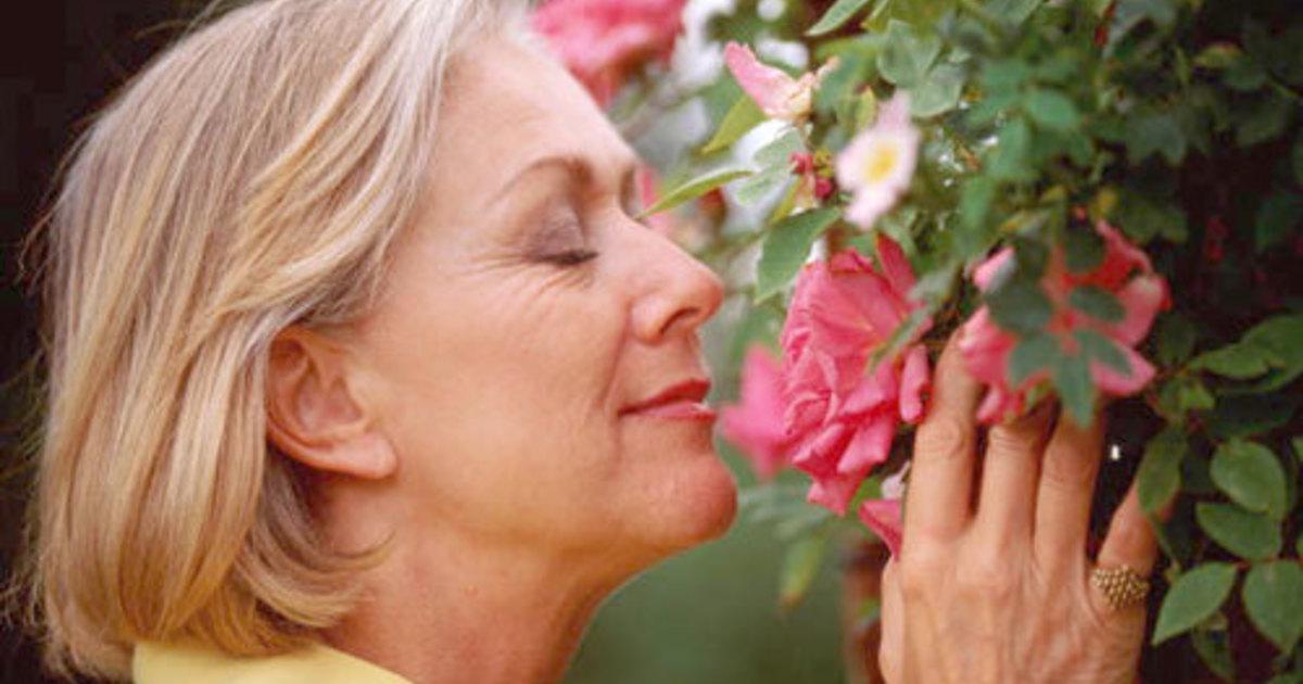 Гормон может предсказать возраст менопаузы