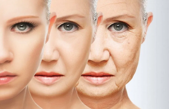 Назван основной фактор, ускоряющий старение женщин
