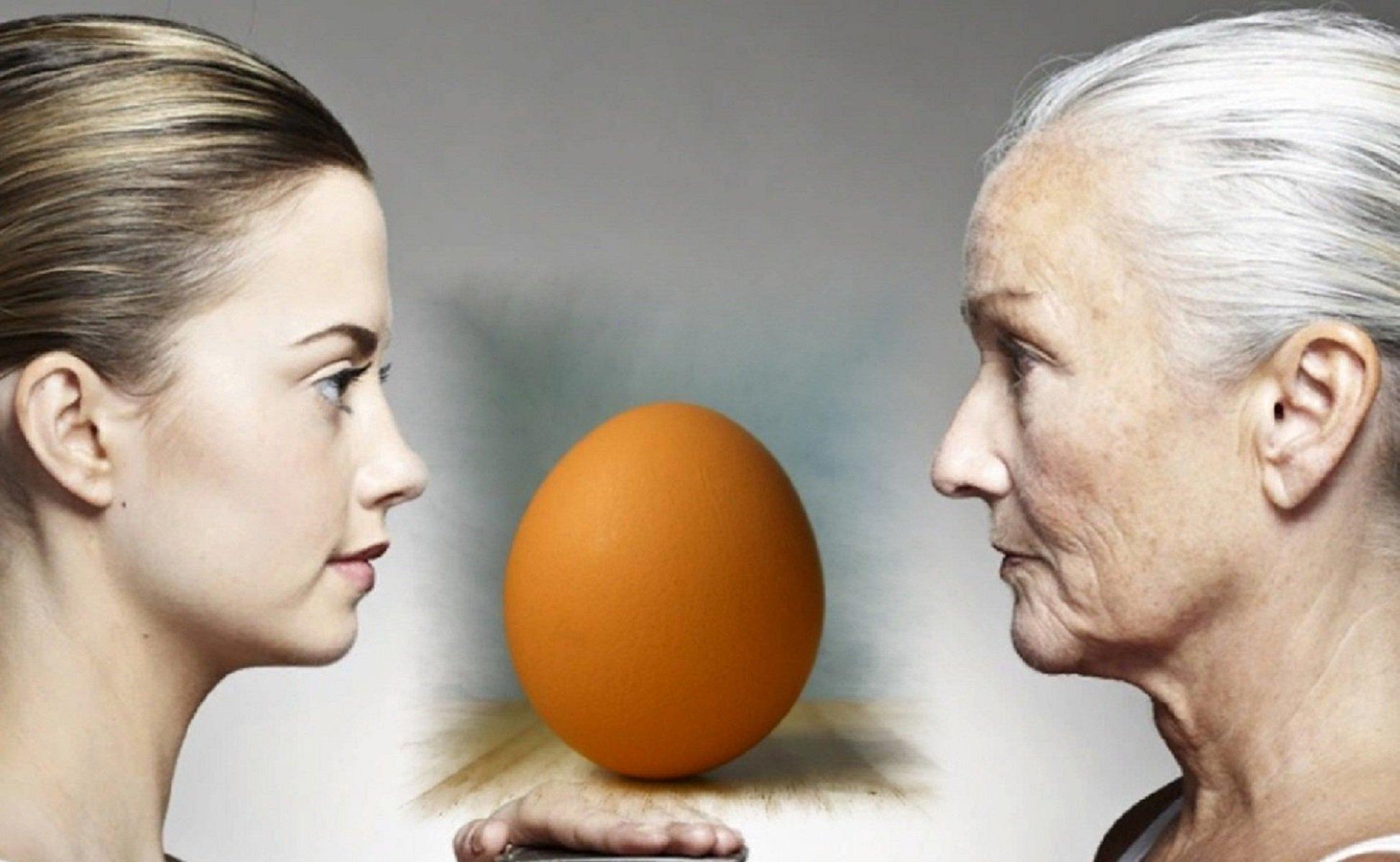 Помогают ли витамины при климаксе: результаты исследований